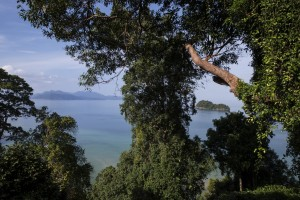 64975601-H1-The_Datai_Langkawi_-_Villa_Hutan_-_the_view_1