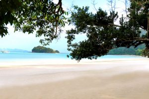 the-datai-bay